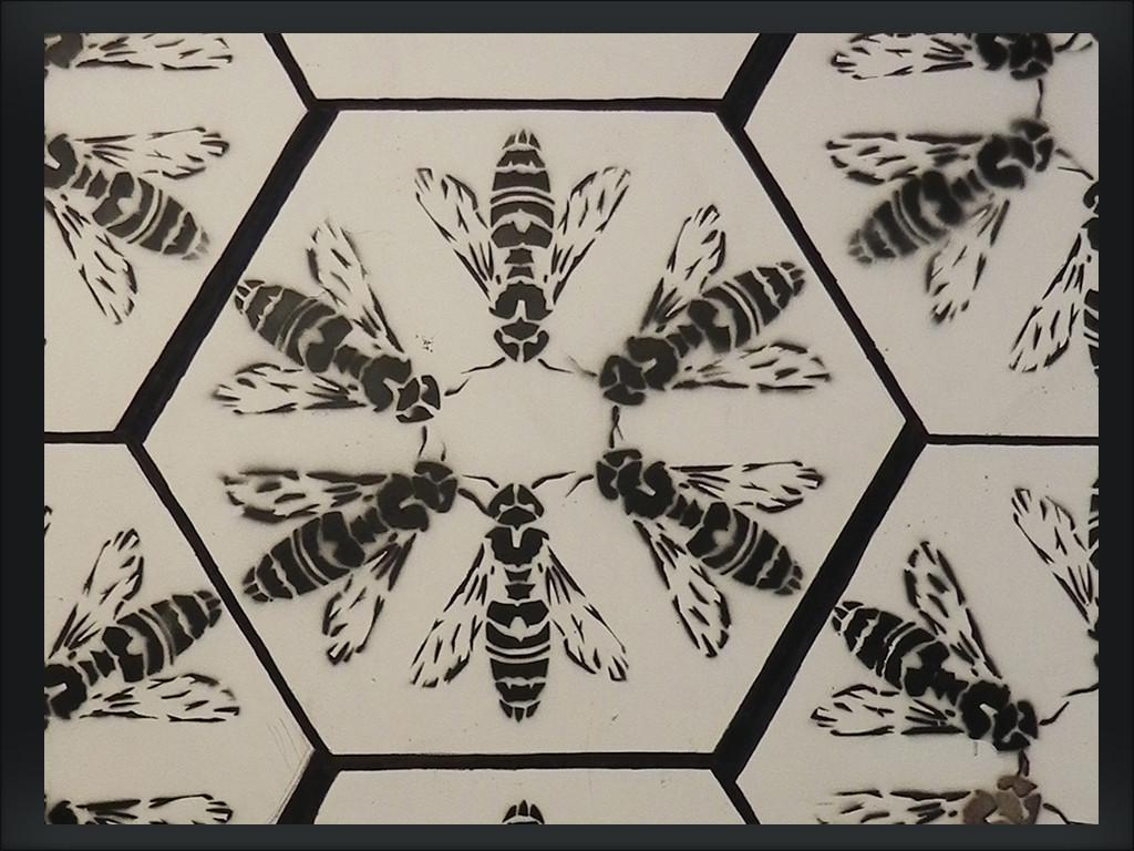 pszczoły02a