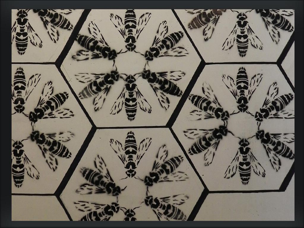 pszczoły03a
