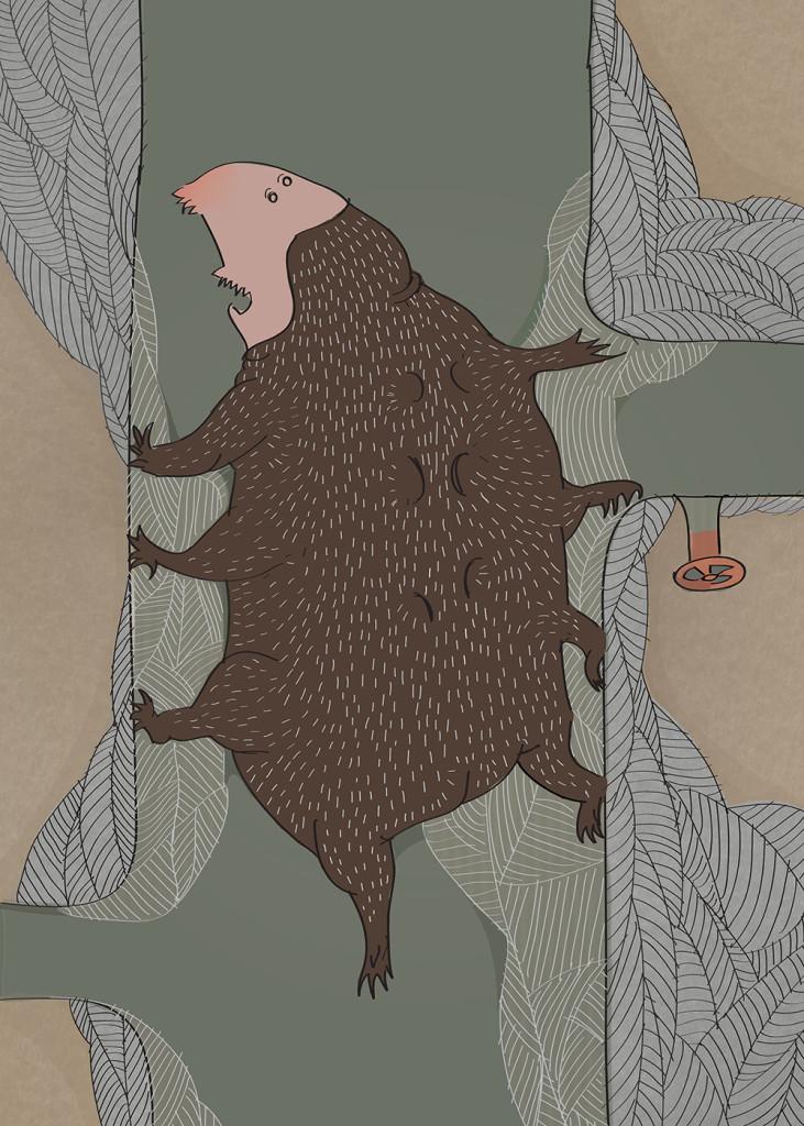 niedźwiedź7